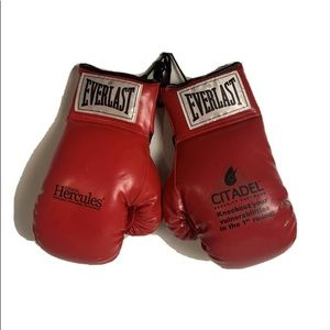 Boxing Gloves 10 Ounce Everlast Citadel Hercules